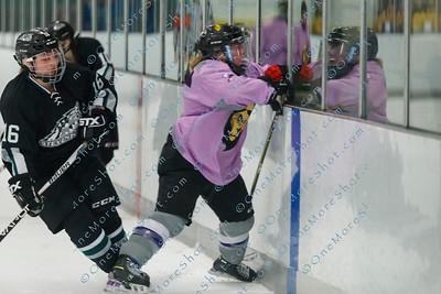 Kings_Womens_Ice_Hockey_vs_Stevenson_12-01-2018-33