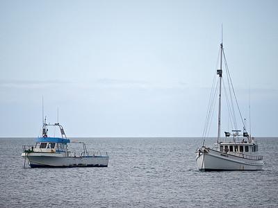 Boats4 (22)