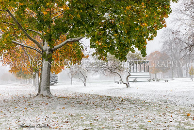 October Snow on Tree Lined Plains