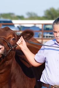 kiowa_county_cattle_jackpot_2020012