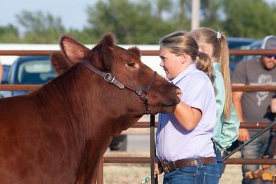 kiowa_county_cattle_jackpot_2020009