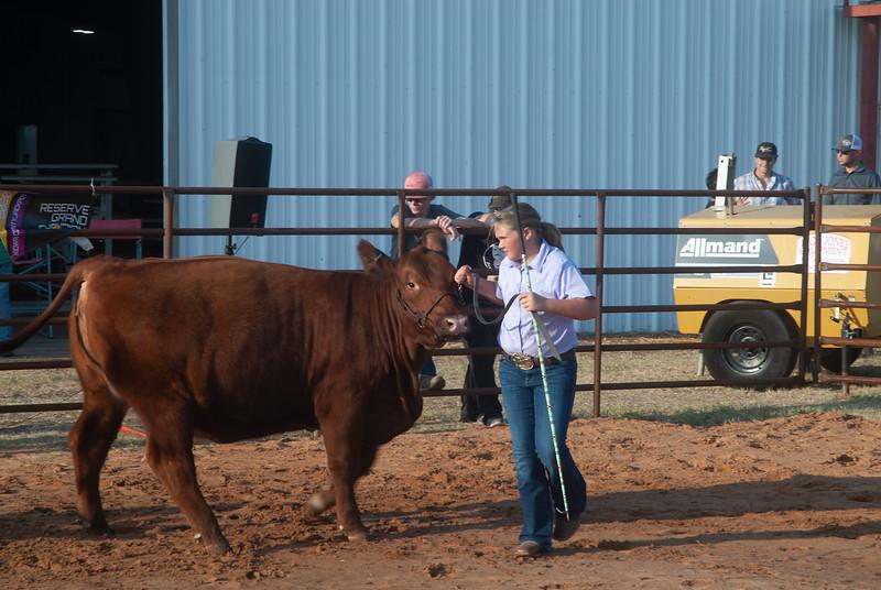 kiowa_county_cattle_jackpot_2020016