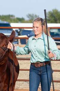 kiowa_county_cattle_jackpot_2020011
