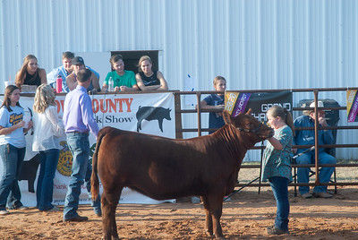 kiowa_county_cattle_jackpot_2020017