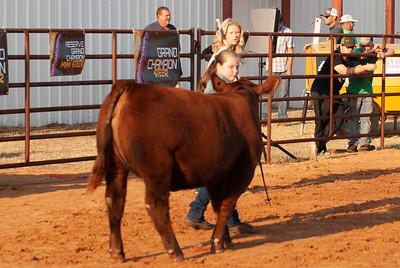 kiowa_county_cattle_jackpot_2020019