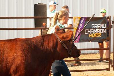 kiowa_county_cattle_jackpot_2020008