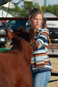 kiowa_county_cattle_jackpot_2020003