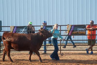 kiowa_county_cattle_jackpot_2020020