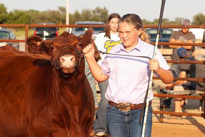 kiowa_county_cattle_jackpot_2020022