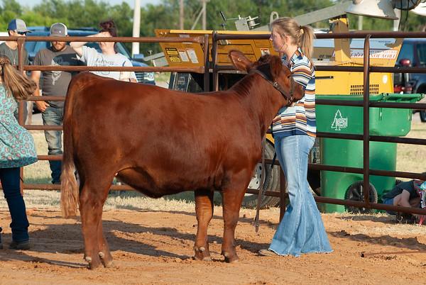 kiowa_county_cattle_jackpot_2020002