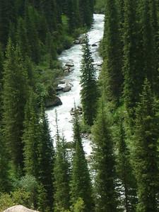 Dolina idzie ku górze a widoki na rzeczkę sa naprawde niesamowite