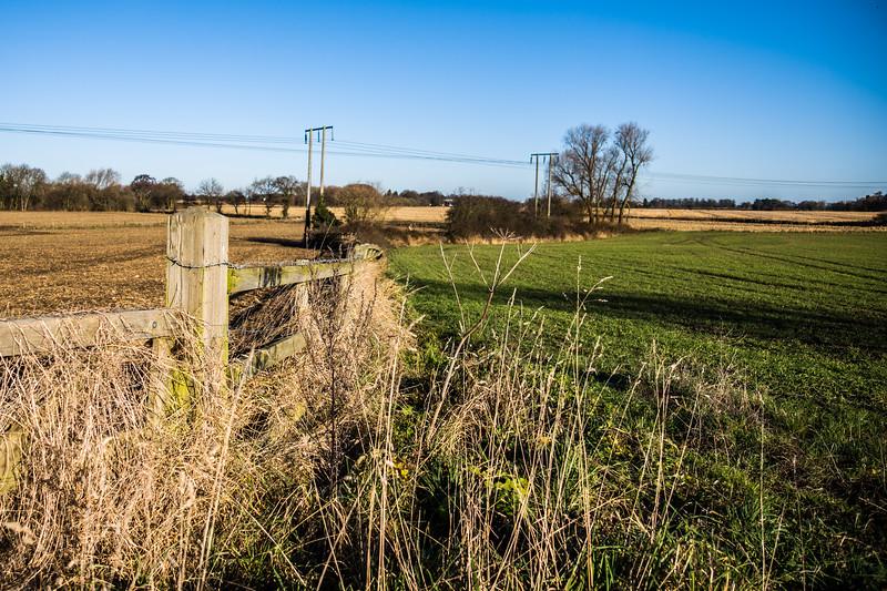 Barnby Dun fields