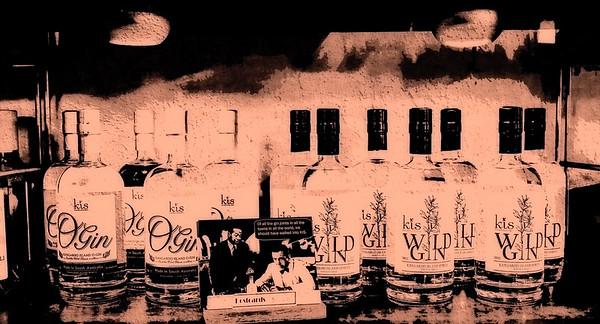 KIS Wild Gin FX Merged