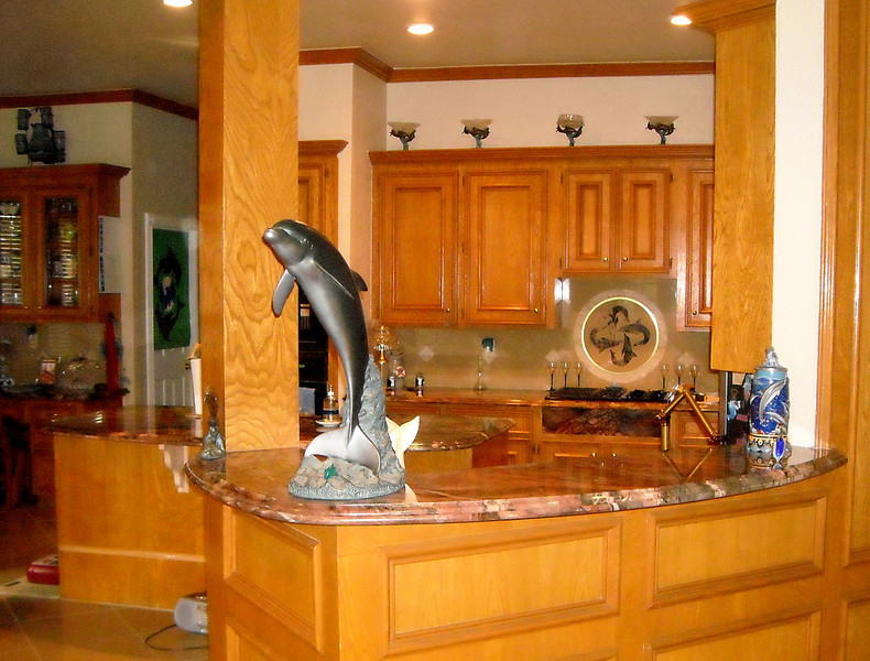 Kitchen Tops and Dolphin-Themed Tile Art by Schlitzberger Stone Designs