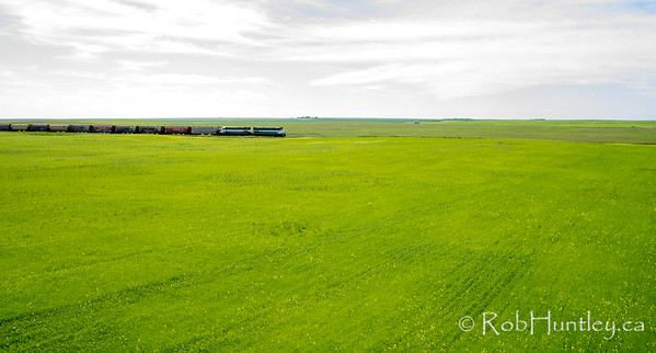 Freight train in Saskatchewan