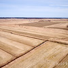 Aerial photograph. Amherst, Nova Scotia. The fields are turf in spring, Maritime Sod Ltd. © Rob Huntley
