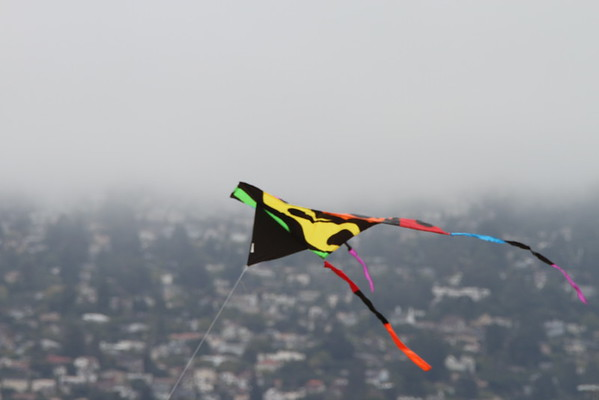 Kite Festival - Berkeley