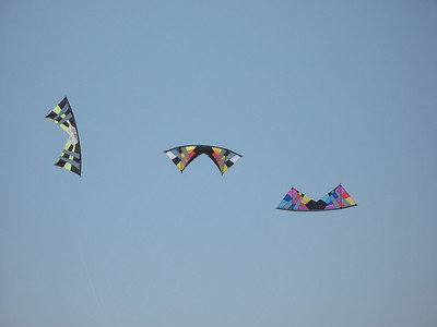 Revolution Kites'  vented quadline beauty