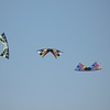 Revolution Kites'  vented quadline beauty