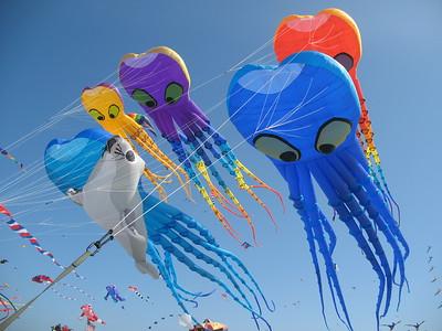 Kite Festivals - WSIKF