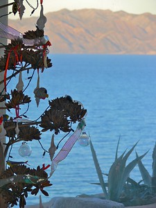 X-mas on the Sea of Cortez