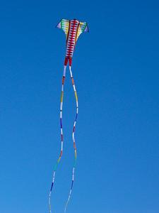 My Sweetie's 2nd Anniversary Kite: Barbara Meyer's Swallowtail Delta by Premier Kite and Designs. Feb. 2011, Doran Beach, Bodega Bay, CA