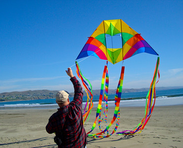 My 1st Anniversary kite: 10 ft. Alpine  Delta Conyne by Into the Wind with tube tails, transition tails, and streamer tails. Feb. 2011 @ Doran Beach, Bodega Bay, CA