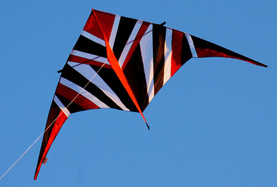 Premier Kites, USA - 14' black, red, and white delta. Designed by Reza Ragheb.