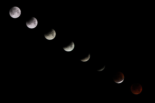 Lunar Eclipse!!!