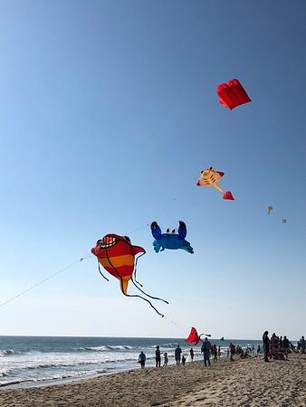 Cape Fear Kite Festival 2017 (2)