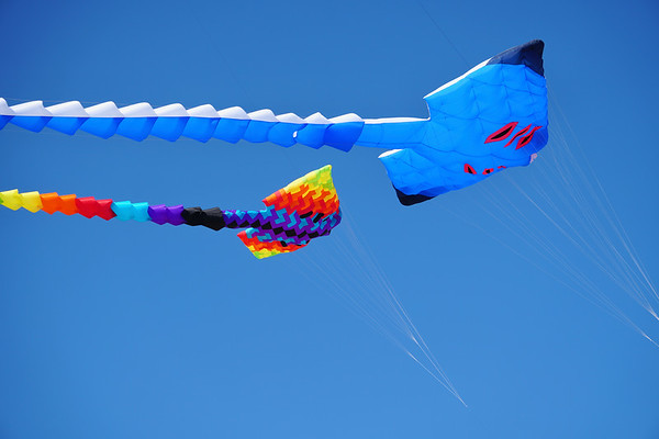 Cape Fear Kite Festival 2017