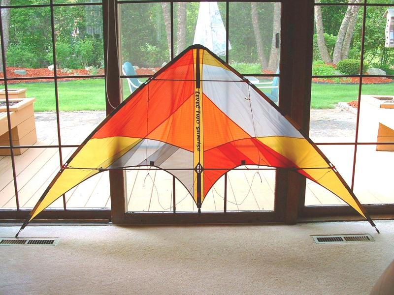 Level One Level Two dual line stunt kite (seller's photo)