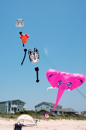 Jungle Animal Kites