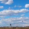 LB Kiting 3.15.2014 014