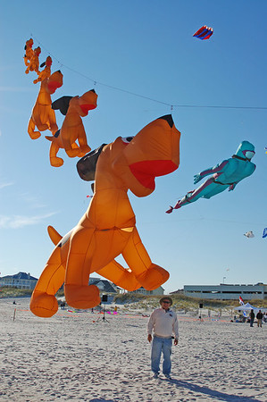 Possible Kites for Destin