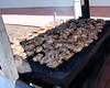 Kiwanis Senior BBQ 2006 019