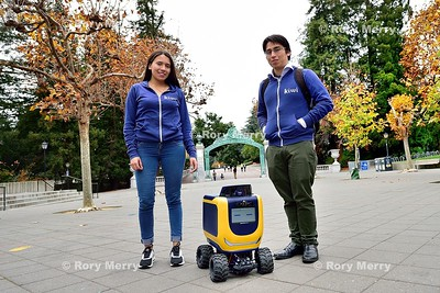 Kiwi On-Demand Delivery Robot