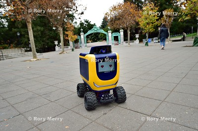 On-Demand Delivery Robot