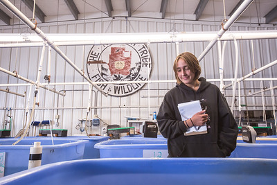 Libbie Ekstrom looks into a rearing tank of endangered suckers at the Klamath Tribes' Sprague River Fish Hatchery. (Ben Lehman - Contributed photo)
