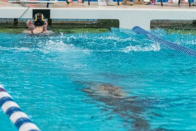 KO_swim_dive-01269