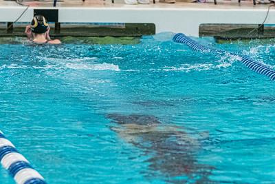 KO_swim_dive-01271
