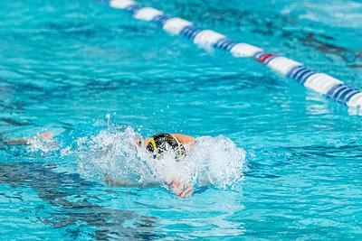 KO_swim_dive-01281