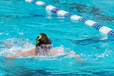 KO_swim_dive-01287