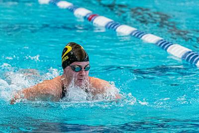 KO_swim_dive-01288