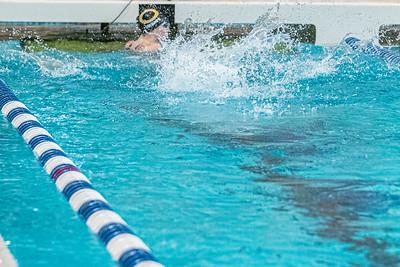 KO_swim_dive-01268