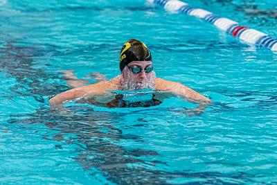 KO_swim_dive-01277