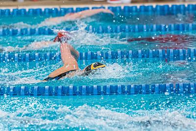 KO_swim_dive-01978
