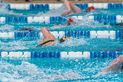 KO_swim_dive-01973