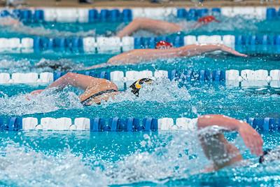 KO_swim_dive-01972
