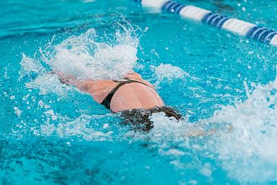 KO_swim_dive-02957